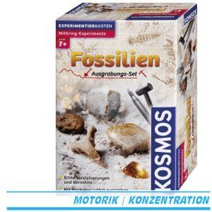 Ausgrabungsset Fossilien - Kosmos